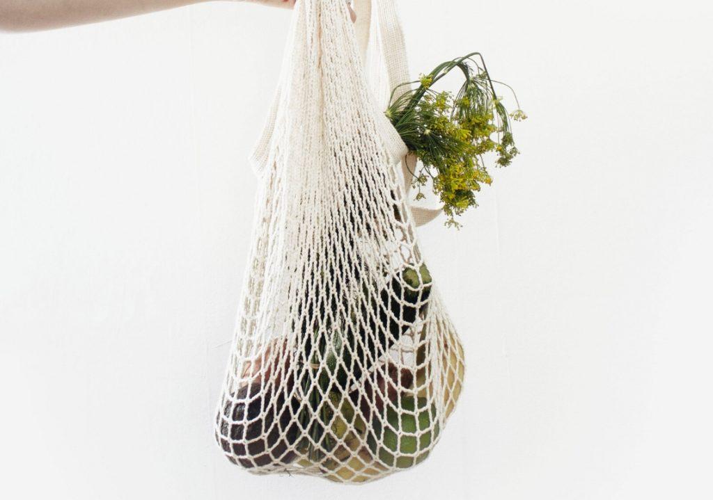 Bag holding groceries 2020 tofucado goals